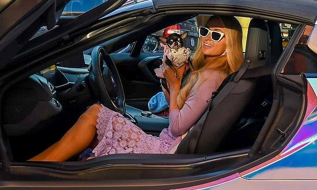 Paris Hilton with Chihuahua in Custom BMW